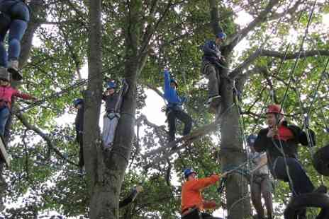 Kingsway Adventure Activities - High Ropes Course - Save 50%