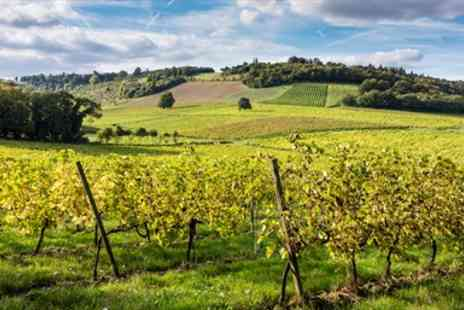 Denbies Wine Estate -  Surrey Vineyard Train Tour with Bubbly for 2  - Save 50%