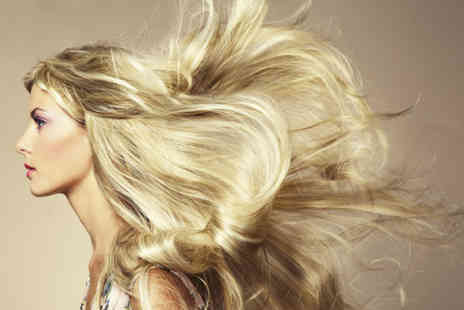 Beauty and the Barber -  Half head highlights or full colour, plus a cut and blow dry  - Save 64%