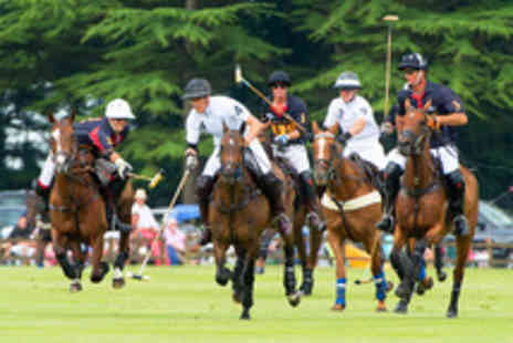 Cirencester Park Polo Club - Car Pass and Entry for up to Five to The Bledisloe Warwickshire Cup Polo Final - Save 66%