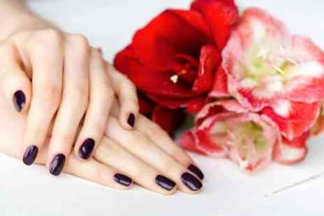 Eclipz salon - Shellac or Gelish Nails For Fingers or Toes or Both  - Save 0%