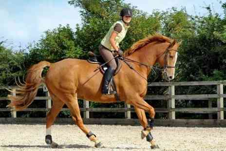 Mill House Riding Centre - 60 Minute Horse Riding Lesson - Save 50%