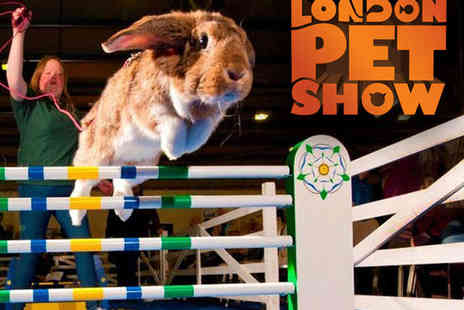 ExCel London - Adult Ticket to The London Pet Show - Save 31%