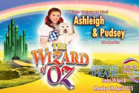 Shone Productions - Ticket to The Wizard of Oz One Best Available  - Save 25%