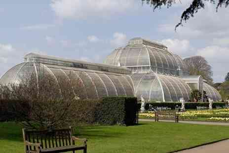 Kew Royal Botanic Gardens - Kew Plant Finders Fair With Entry to Kew Gardens for £15 - Save 0%