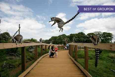 ZSL London Zoo - Annual Membership to  ZSL London and Whipsnade Zoo - Save 20%