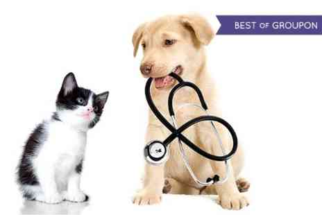 Best Friends Veterinary Group - Vet Services - Save 65%