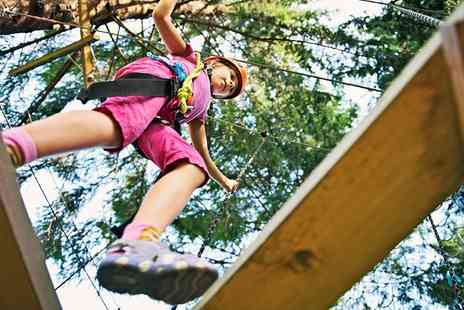 Colin Glen Trust - High and Low Skytrek Rope Courses - Save 0%