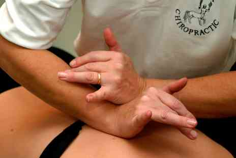 Sussex Chiropractic - Consultation and Treatment or Deep Body Massage - Save 83%