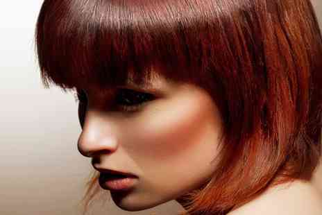 Shamins Hair - Highlights  or Colour  With Cut and Blow Dry - Save 63%