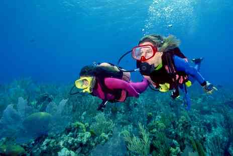 Diving Unlimited - Scuba Diving Lesson - Save 41%