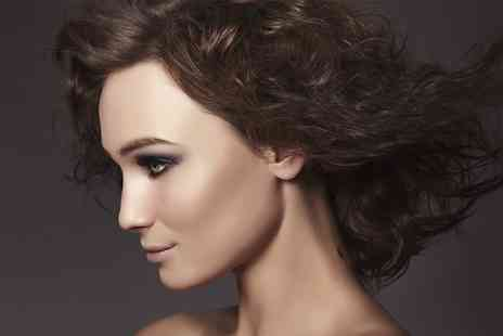 The Beauty Salon - Cut, Blow Dry and Colour For Short  - Save 67%