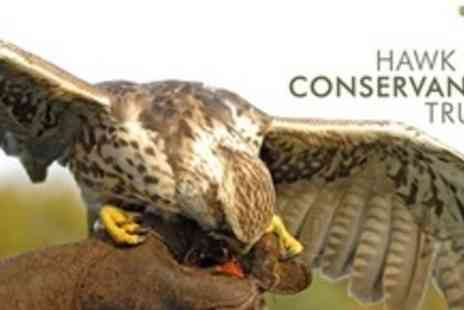 Hawk Conservancy Trust - Entry to Birds of Prey Centre For Two Adults - Save 62%