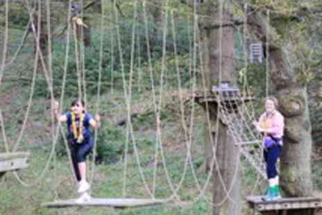 Aerial Extreme  - Tickets to a World of Adventure  - Save 43%