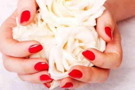 Sun On The Run - Shellac Manicure or Pedicure - Save 0%