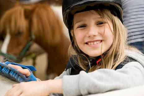 Lee Hill Riding School & Livery - Half Day Children's Holiday Camp  - Save 52%