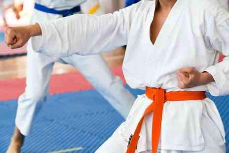 MSC Martial Arts - Fitness or Martial Arts Classes - Save 67%