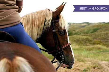 Glenmarkie Riding Centre - One hour Horse Trek  - Save 48%