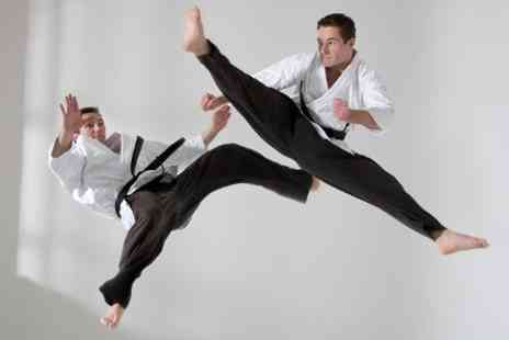 UK Martial Arts Show -  One DayTicket to UK Martial Arts Show - Save 48%