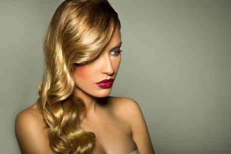 The Hair Shop Swansea - Cut and Blow Dry Plus Colour or Highlights - Save 50%