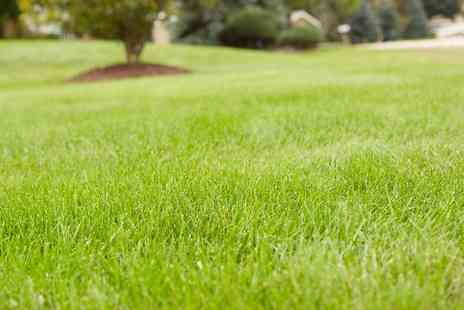 Greensleeves Lawn Care - Lawn Treatment  - Save 53%