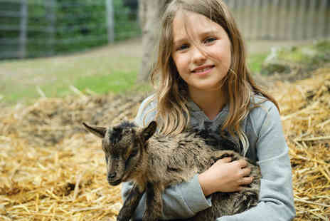 Greenmeadow Community Farm - Entry to Greenmeadow Community Farm - Save 48%