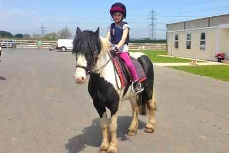 Mill House Riding Centre - Childrens Pony Riding Lesson With Soft Drink - Save 60%