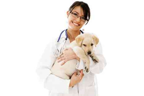 Pet Addict - Online Veterinary Assistant Course - Save 90%