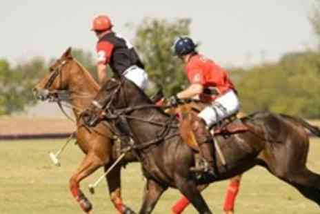 Leadenham Polo Club - 60 Minute Group Polo Lesson For Two - Save 69%