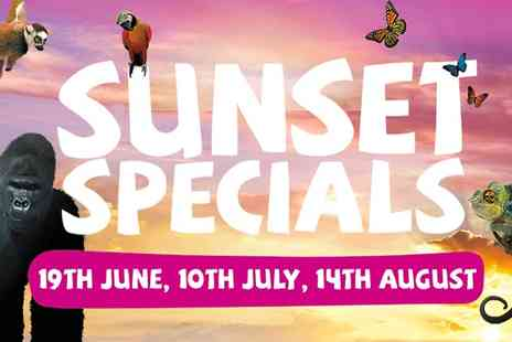 Bristol Zoo Gardens - Entry to Bristol Zoo Sunset Special  For One Adult  - Save 50%