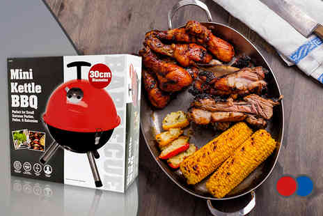 Your Essential Store - Mini kettle barbecue  - Save 73%
