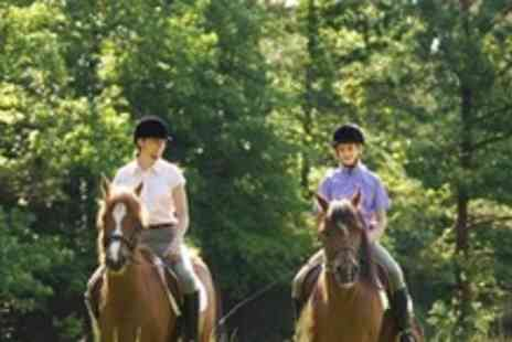 Poplar Park Equestrian - Two Horse Riding Lessons For One - Save 60%