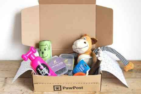 PawPost - PawPost Subscription Cat or Dog Gift Hamper, First Month With Free Delivery - Save 48%