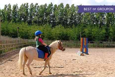 Old Town Riding School - Pony Riding For Kids Saddle Club Pony Experience  - Save 0%
