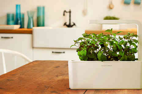 Click and Grow - Click and Grow Smart Gardens - Save 40%