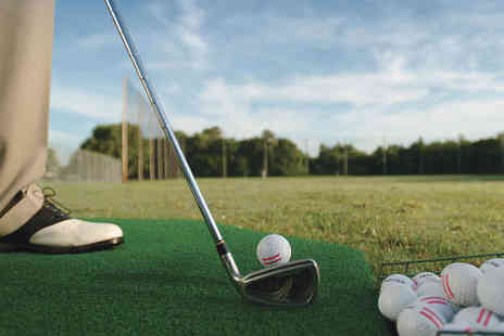Gary Pearson Golf Professional - One  Hour Long Golf Tuition Session - Save 53%