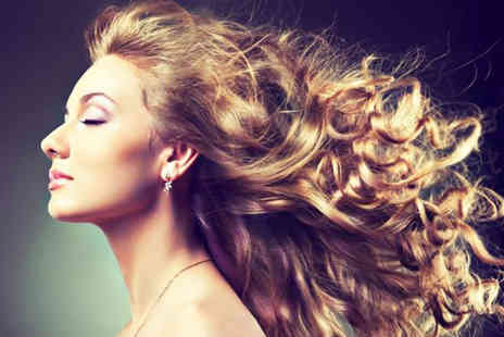 Francesco Group   - Restyle cut, conditioning treatment and blowdry   - Save 53%