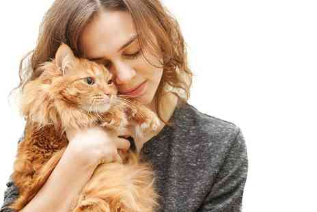 Picture Purrfect Pet Photography - Family photoshoot for up to 10 people and one pet including five prints  - Save 86%