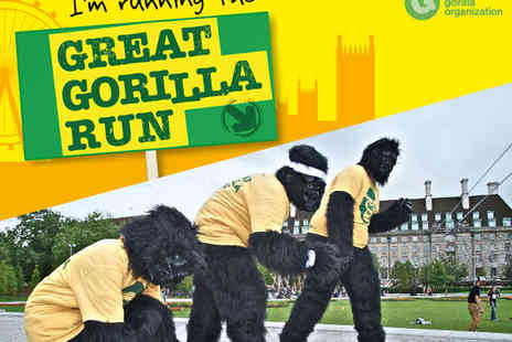 The Gorilla Organisation - Entry for The Great Gorilla Run - Save 10%