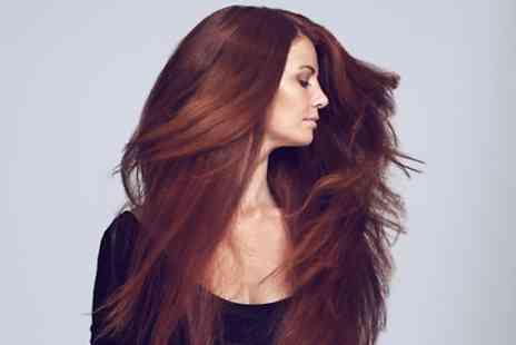 Sekret Hair - Brazilian Blow Dry - Save 40%