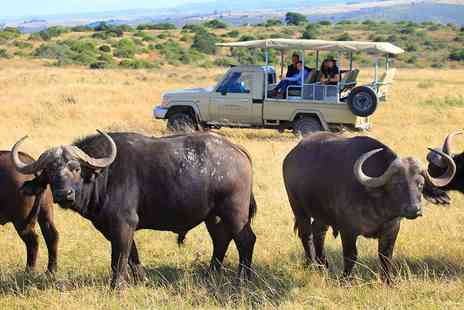 Botlierskop Private Game Reserve - Five night full board South African safari including daily game drives   - Save 46%