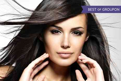 Platinum Hair & Beauty - Cut, Condition and Finish  With Colour  - Save 65%