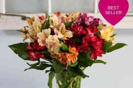 FlowersDelivery4U - Mixed Alstroemeria Bouquet for any occasion - Save 50%