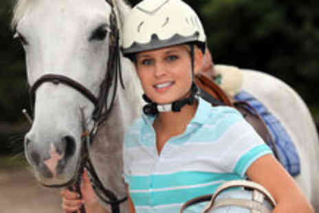 Brimington Equestrian Centre - 30 minute horse riding lessons - Save 61%