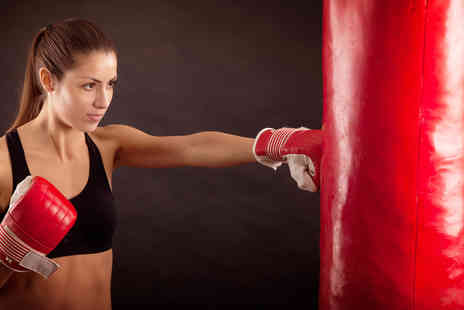 Fighting Scots Gym - Five or Ten lessons boxing classes  - Save 64%