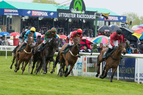 Uttoxeter Racecourse - Premier enclosure ticket to Uttoxeter Racecourse with a live set   - Save 53%