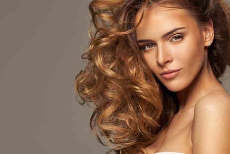 William Jon Hair and Beauty - Haircut and Blow Dry with Conditioning Treatment and a Choice of Colour Service Options - Save 51%