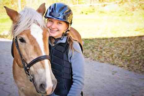 Kathbern Stables -  One Hour Private Lesson For One - Save 53%