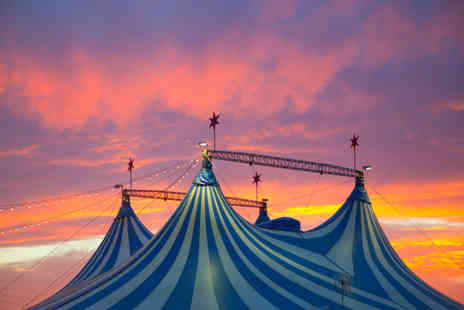 Russell's International Circus - £9 instead of up to £28 for two adult tickets - Save 68%