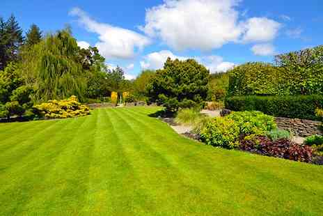 Greensleeves Lawn Care -  Lawn Treatment with Weed Control - Save 53%